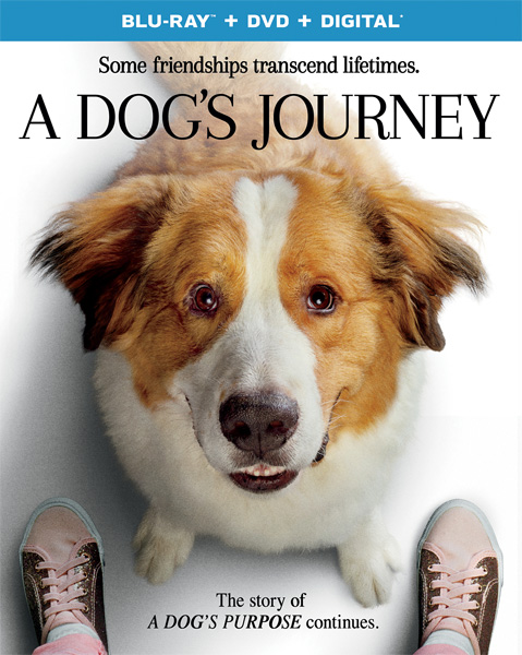 Собачья жизнь 2 / A Dog's Journey (2019) BDRip 720p, 1080p, BD-Remux, Blu-Ray EUR